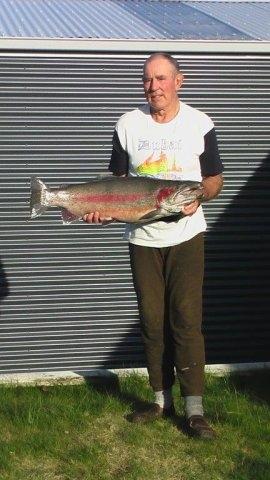 Twizel trout (4)