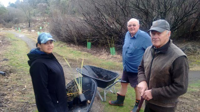 Kiri Te Wano and Paul Green of Project Tongariro and Richard Kemp AFTR  involved in plantingIMG_20180605_095336745