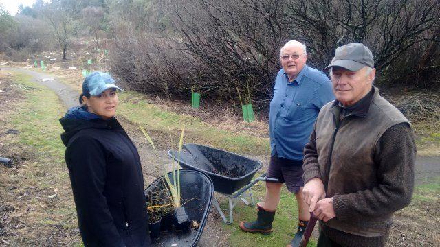 Kiri Te Wano and Paul Green of Project Tongariro and Richard Kemp AFTR  involved in plantingIMG_20180605_095336745