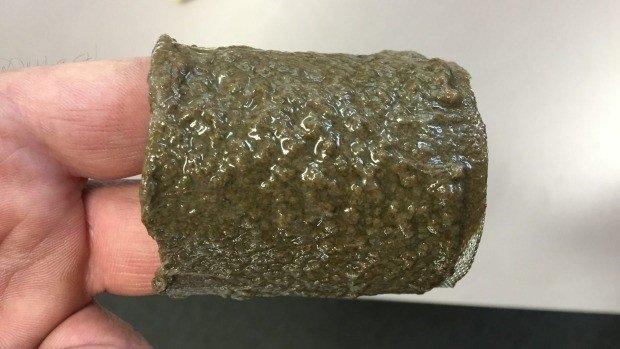 Lake Snot around intake filter from Lake Wakatipu