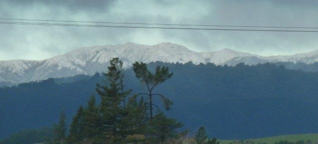 Snow clad Kaimanawas 2714