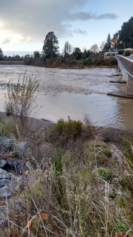 Receding flood waters at SH1 bridge