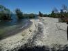 039 The Kuratau Beach where restoration work is occuring