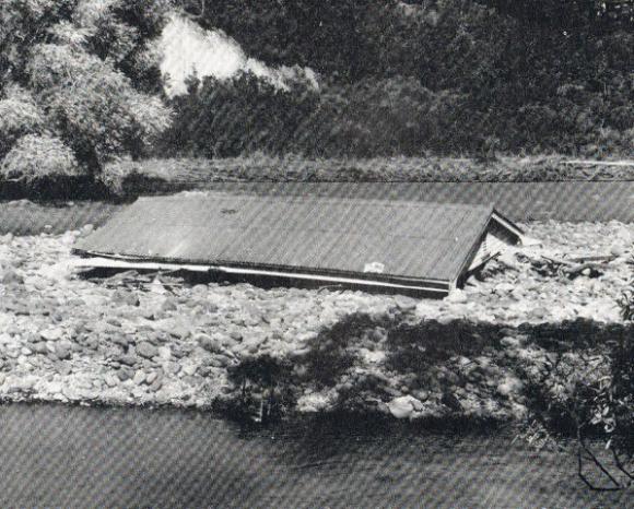roof-of-hartnetts-house