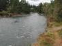 2004 Flood