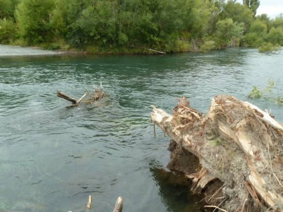066 Log removal from the river is proving difficult