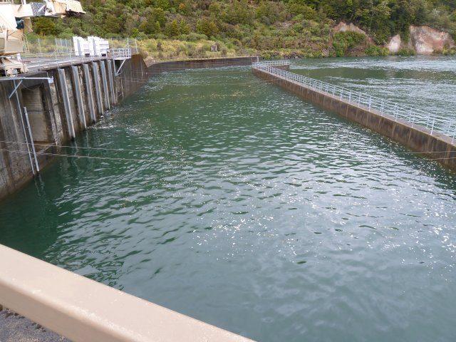 015 Rangipo Dam settling area