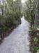 The Tongarir River Trail
